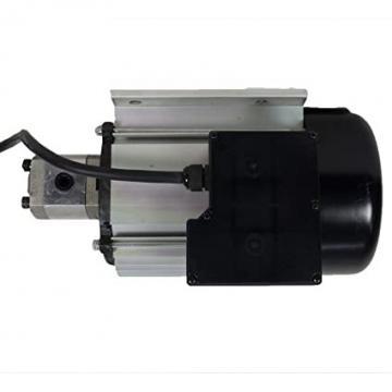 MOTORE KOHLER 4T 6,5 HP CON LANTERNA E POMPA IDRAULICA VIVOLO Made in Italy