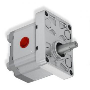 FAAC 7091015 DDE 175 POLYPAC motore oleodinamico modello 400