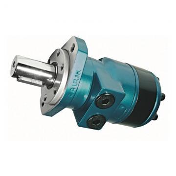 3/4 HP ben poco profonde Jet Pompa con Interruttore a pressione, 115/230V dual voltage, UL