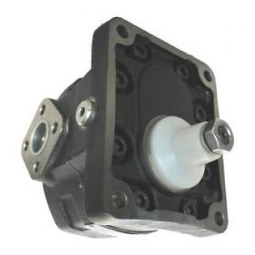 VDS PHV 240 100021 Motore Attuatore Oleodinamico Lineare 230V anta 4mt