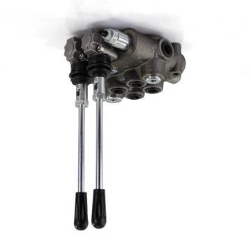Distributore idraulico 5 sezioni 2 joystick Valvole a doppio effetto 40L element