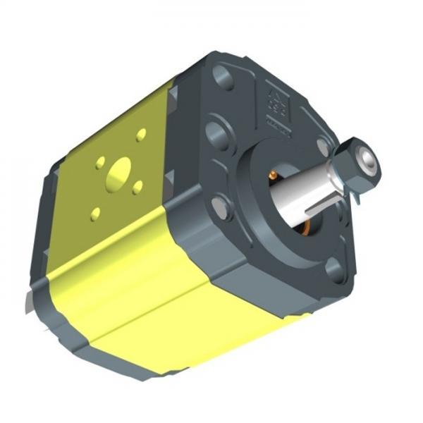 VDS PH 1 12384 Motore Attuatore Oleodinamico Lineare 230V anta 5mt  #3 image