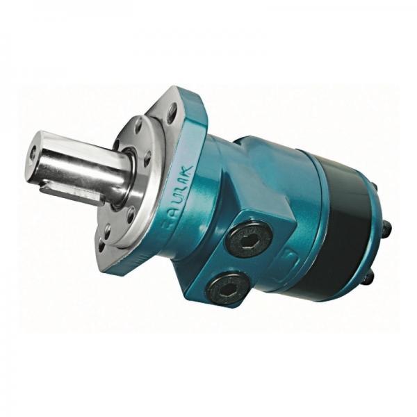 1266743 Supporto motore oleodinamico Ape Diesel #1 image