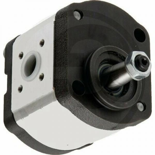 Ford New Holland Hydraulic Pump #1 image