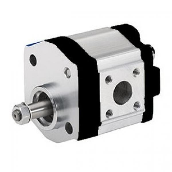 Fiat 500 Tractor Hydraulic Pump #1 image
