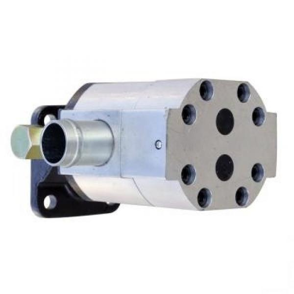 Pompa Idraulica per Massey Ferguson 396 (Motore 1006.6), 399 (10 + 8 cm ³) #2 image