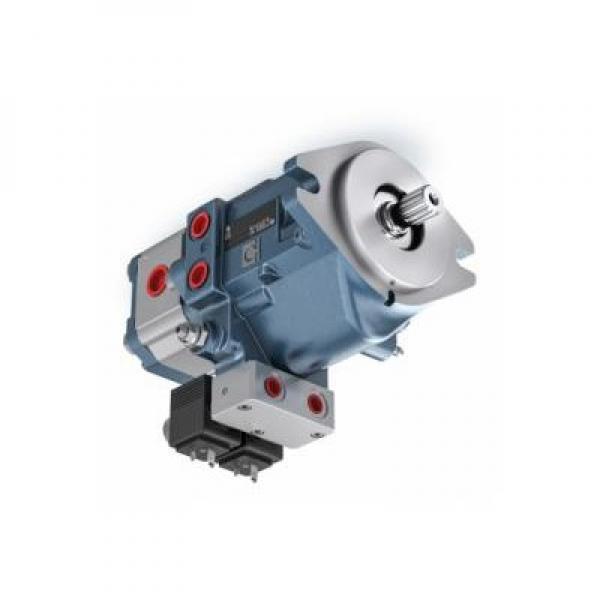 Flowfit Idraulico Doppio Agendo Cilindro / RAM 80x40x100x310mm 705/100 #1 image