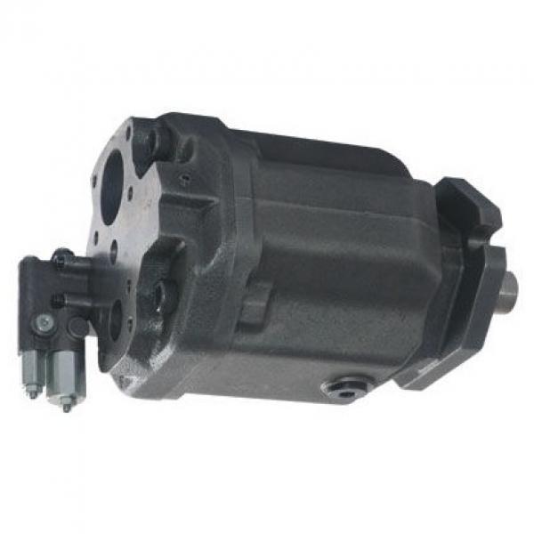 Cilindro Idraulico Doppia Azione 32/20 Div. Mod. Varianti Con E senza Fissaggio #1 image