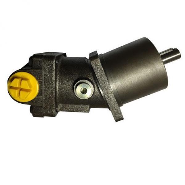 Kompass Variabile Cilindrate Pistone Idraulico Pompa 36CC Manuale 30-215 BAR #2 image
