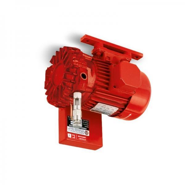"Parker Idraulico Pump .85 "" Shaft Pvp4830b2l11 #1 image"