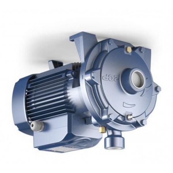 Nuova inserzione1X(Pompe idrauliche gibili di pompa idraulica di circolazione dell'acqua de E8I2 #1 image