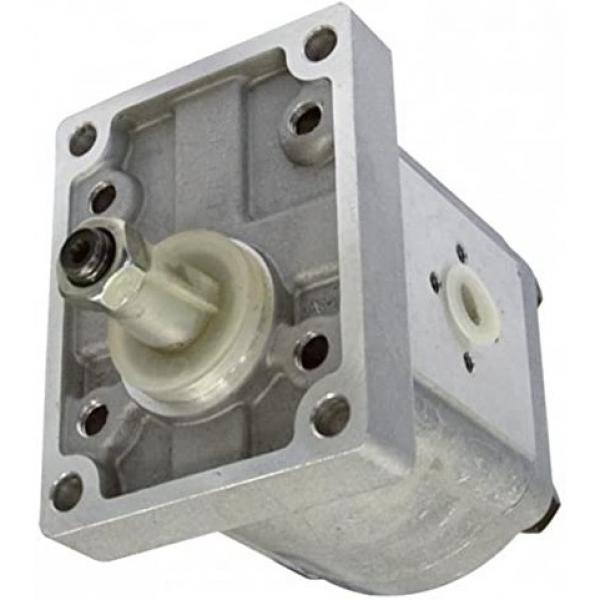 Gruppo valvola controllo pompa idraulica per Massey Ferguson 135 165 240 375 + #1 image