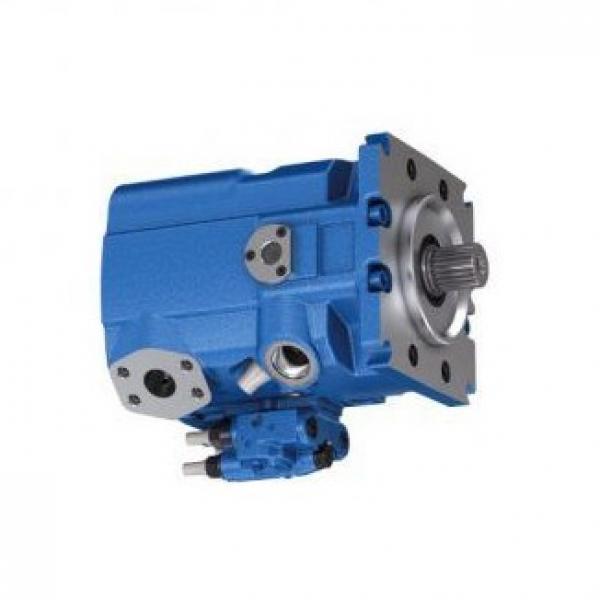 Guarnizione Regolatore Pressione Diesel Gasolio per Pompa Alta Pressione Bosch #1 image