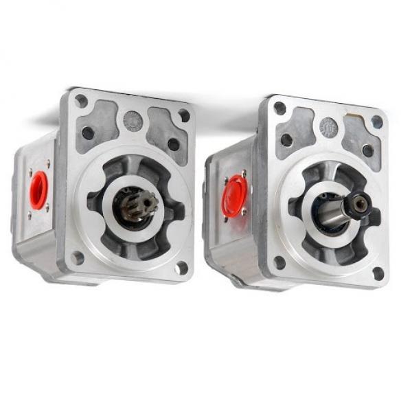 Guarnizione Regolatore Pressione Diesel Gasolio per Pompa Alta Pressione Bosch #3 image