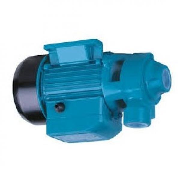 Pompa Idraulica A Micro Diaframma Ad Alta Pressione Da 2 Pezzi Per Model_D #2 image