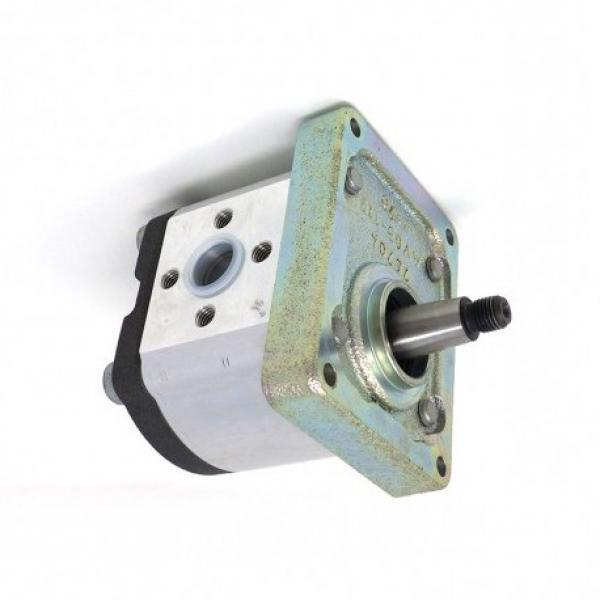 8L 12V Volt Pompa Idraulica Gruppo Oleodinamica Doppio Effetto Metallo Riparare #3 image