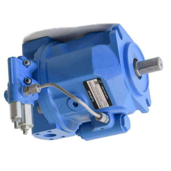 50cc/rev Pompa A Pistone Idraulica idrostatica 7.545050022 #1 image
