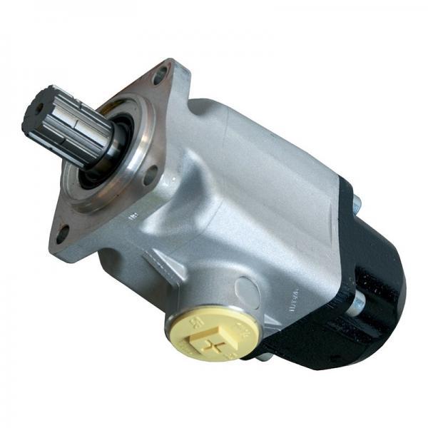 3705784 PARKER/VOAC/VOLVO 15 X Anelli Pistone fuo pompa idraulica/Motore F11-039 #1 image